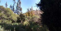 Parcela El Rosario, Valle del Elqui